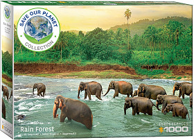 Save our Planet Collection - Rain Forest